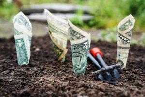 Uredite okolico ter povečajte vrednost nepremičnine